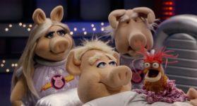 Плюшевые свиньи и ксеноморф в космосе
