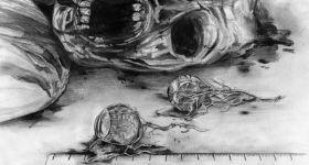 Вскрытие зомби