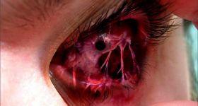 Кровавые компьютерные игры улучшают зрение