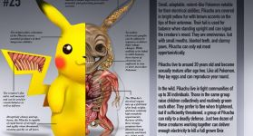 Анатомия покемонов